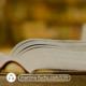 Martina-Fuchs-Bestseller-Von-der-Idee-zum-Buch-zum-Bestseller-Buch-schreiben